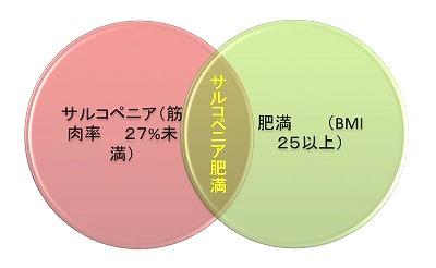 サルコペニア肥満.jpg
